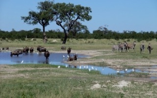 Namíba-Botswana-Zimbabwe körutazás