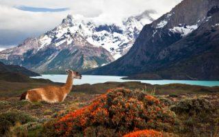 Dél-Amerika körutazás - Torres del Peine