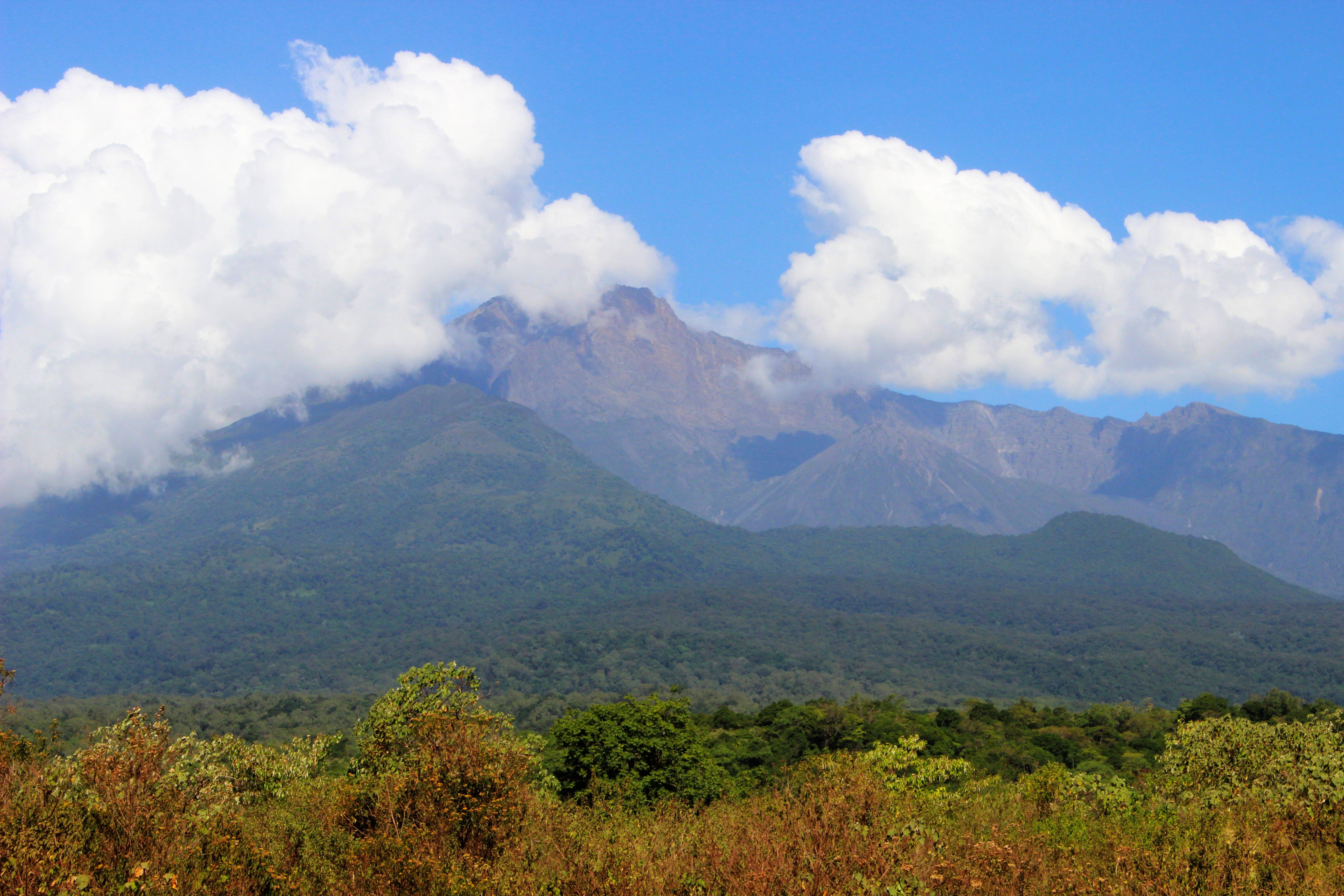 Arusha Nemzeti Park-fotó:Papp Éva
